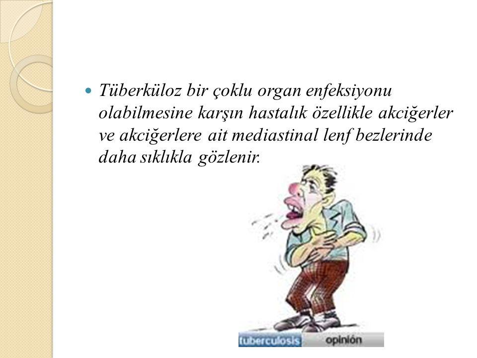 Tüberküloz bir çoklu organ enfeksiyonu olabilmesine karşın hastalık özellikle akciğerler ve akciğerlere ait mediastinal lenf bezlerinde daha sıklıkla gözlenir.