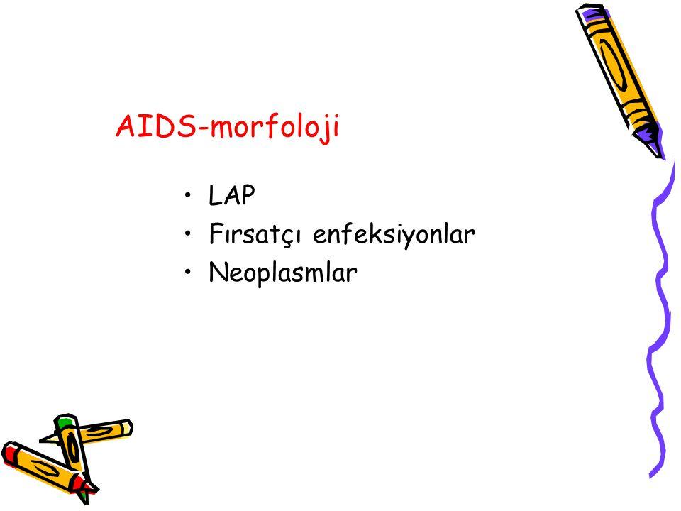 AIDS-morfoloji LAP Fırsatçı enfeksiyonlar Neoplasmlar