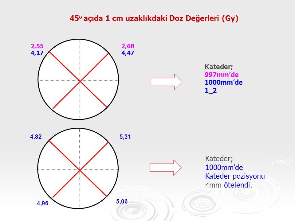 45o açıda 1 cm uzaklıkdaki Doz Değerleri (Gy)