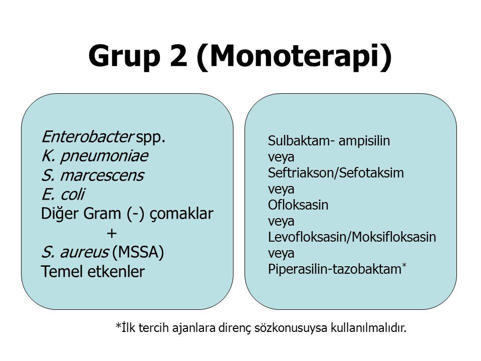 Grup 2 (Monoterapi) Enterobacter spp. K. pneumoniae S. marcescens