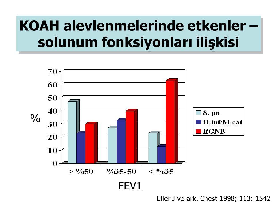 KOAH alevlenmelerinde etkenler – solunum fonksiyonları ilişkisi