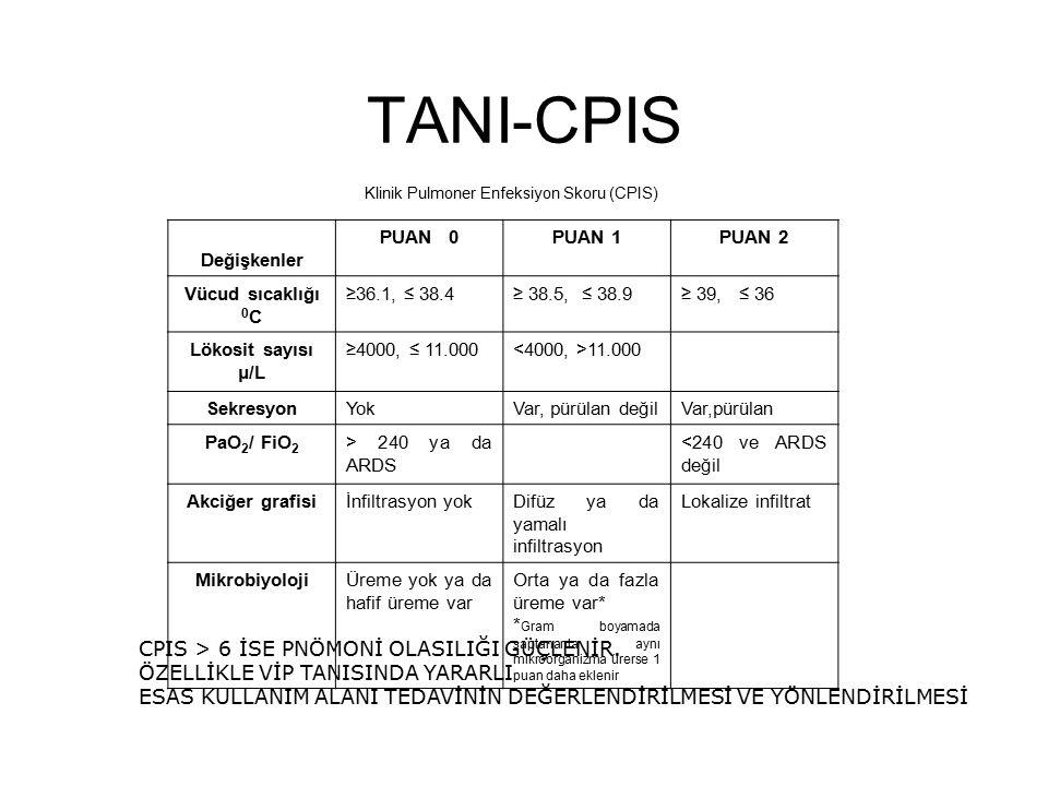Klinik Pulmoner Enfeksiyon Skoru (CPIS)