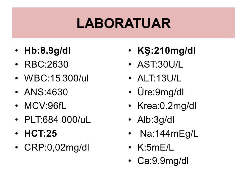 LABORATUAR Hb:8.9g/dl RBC:2630 WBC:15 300/ul ANS:4630 MCV:96fL