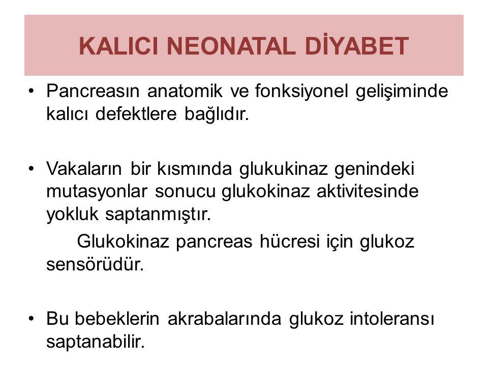 KALICI NEONATAL DİYABET