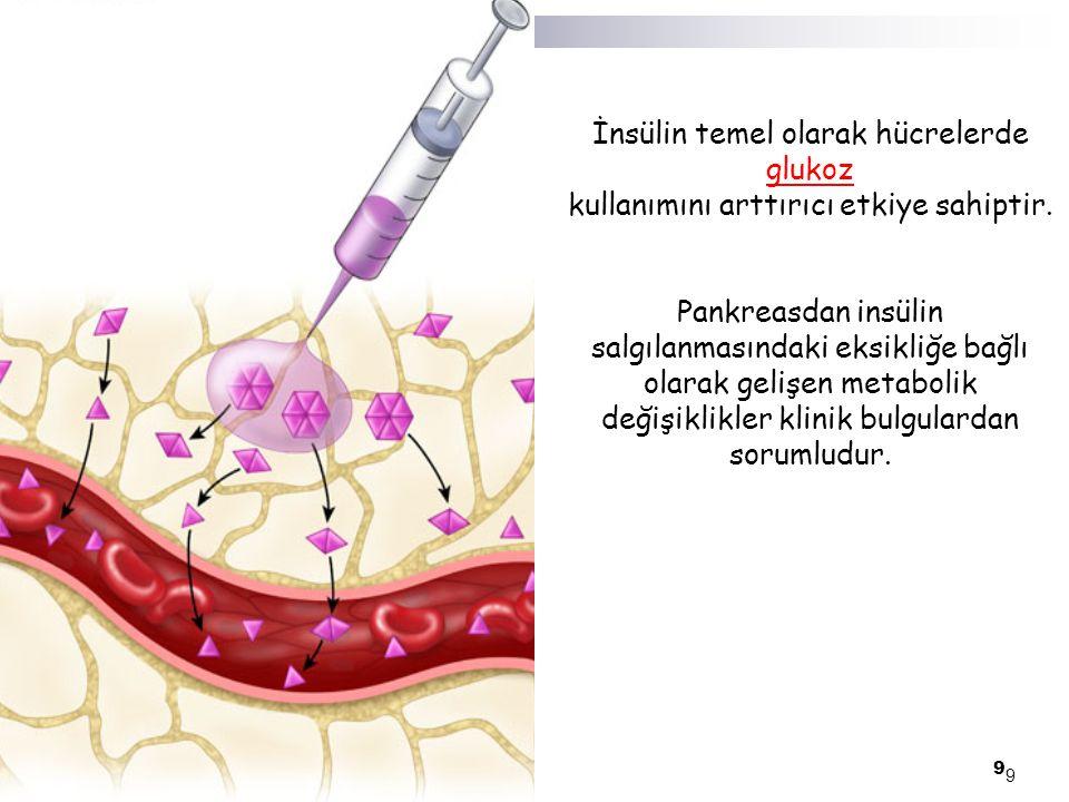İnsülin temel olarak hücrelerde glukoz