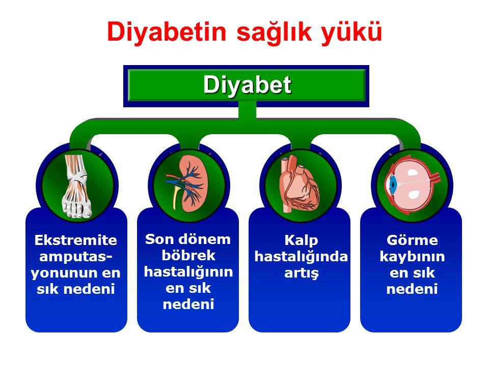 Diyabetin sağlık yükü Diyabet