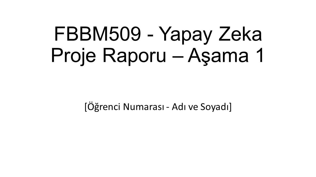 FBBM509 - Yapay Zeka Proje Raporu – Aşama 1