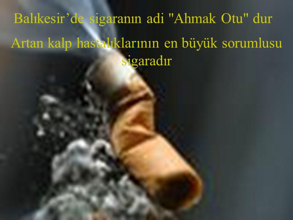 Balıkesir'de sigaranın adi Ahmak Otu dur