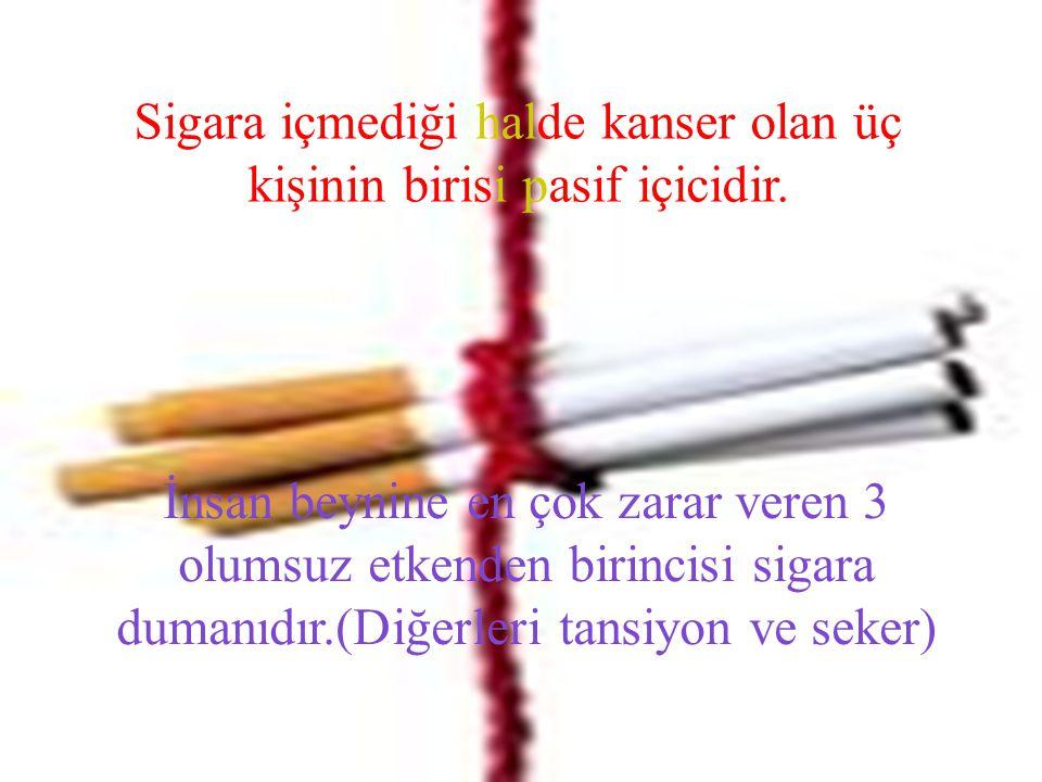 Sigara içmediği halde kanser olan üç kişinin birisi pasif içicidir.