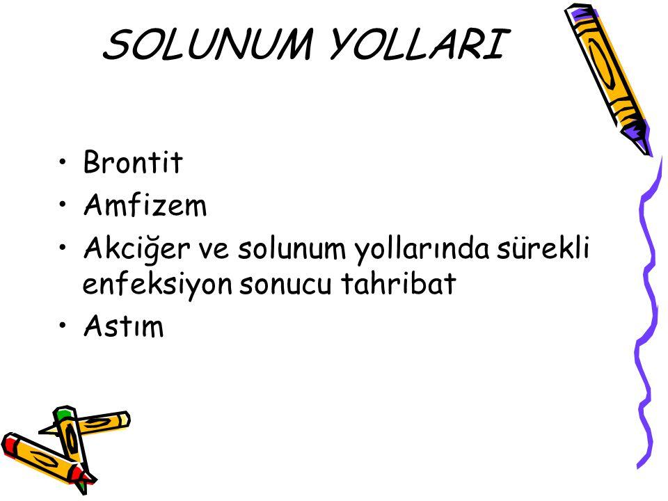 SOLUNUM YOLLARI Brontit Amfizem