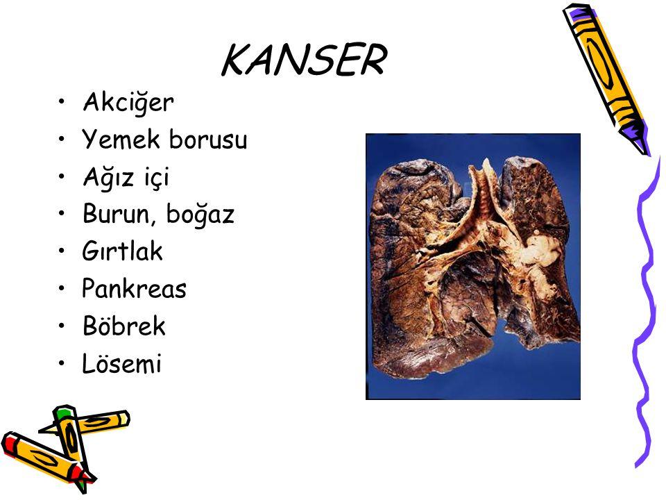 KANSER Akciğer Yemek borusu Ağız içi Burun, boğaz Gırtlak Pankreas