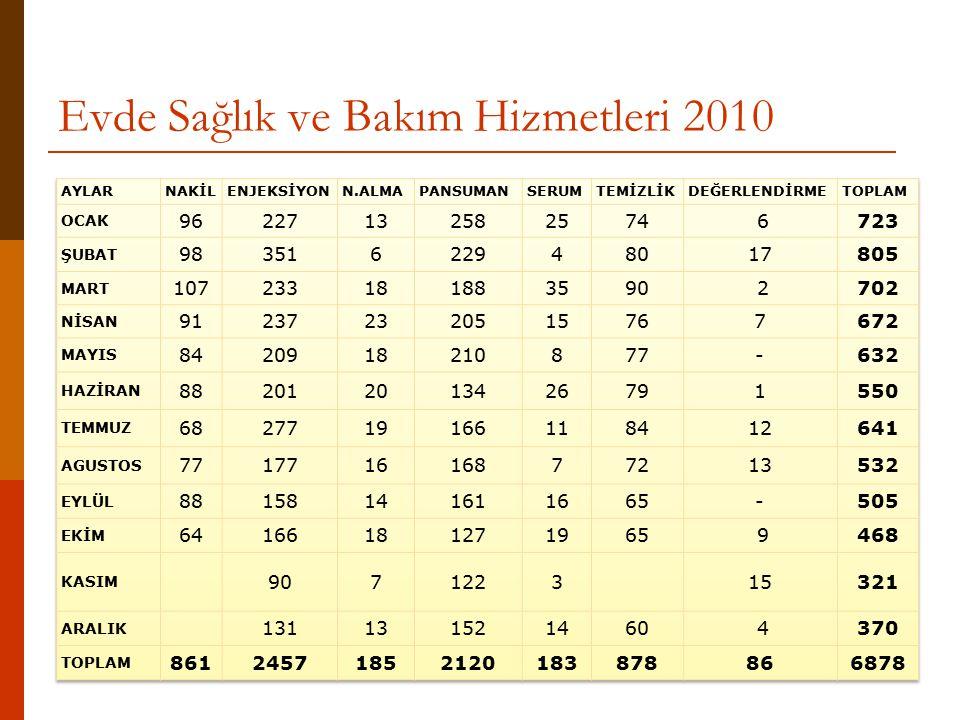 Evde Sağlık ve Bakım Hizmetleri 2010