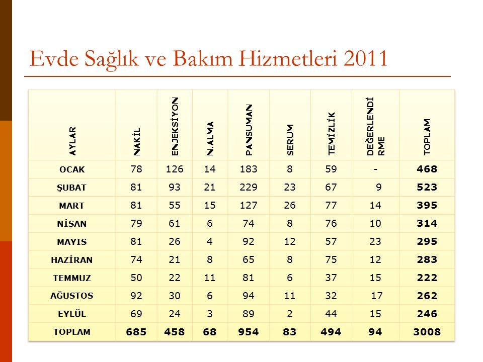 Evde Sağlık ve Bakım Hizmetleri 2011
