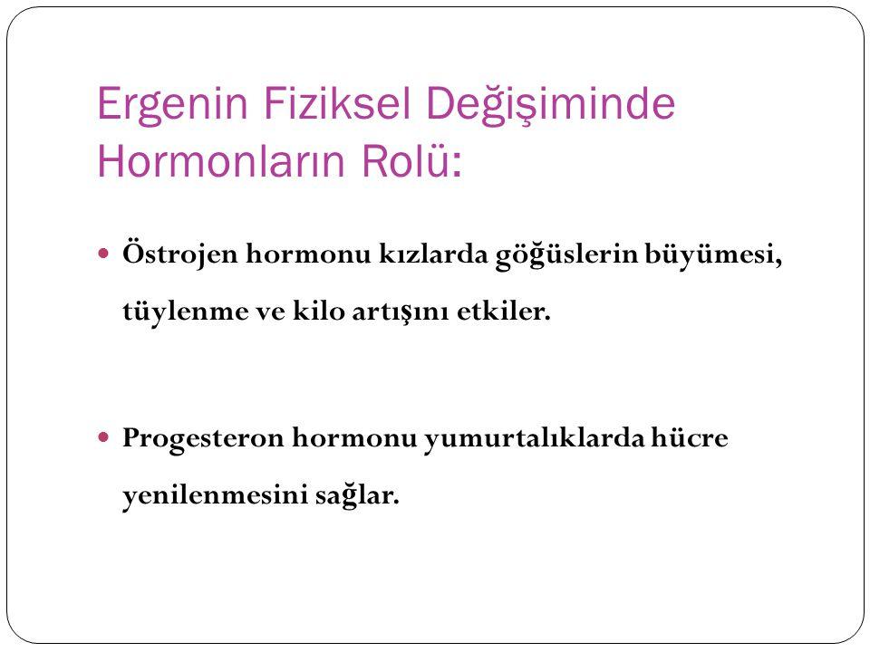 Ergenin Fiziksel Değişiminde Hormonların Rolü: