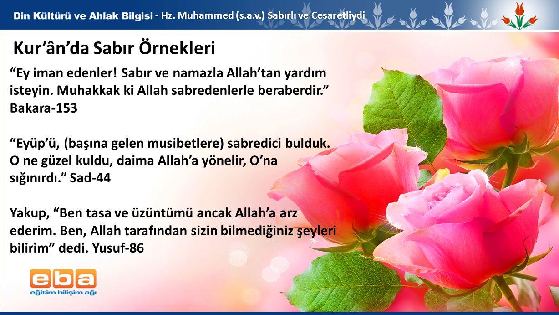 Kur'ân'da Sabır Örnekleri