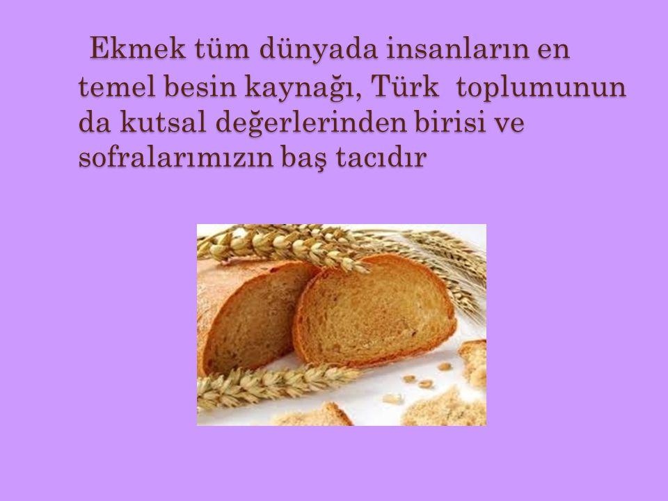 Ekmek tüm dünyada insanların en temel besin kaynağı, Türk toplumunun da kutsal değerlerinden birisi ve sofralarımızın baş tacıdır