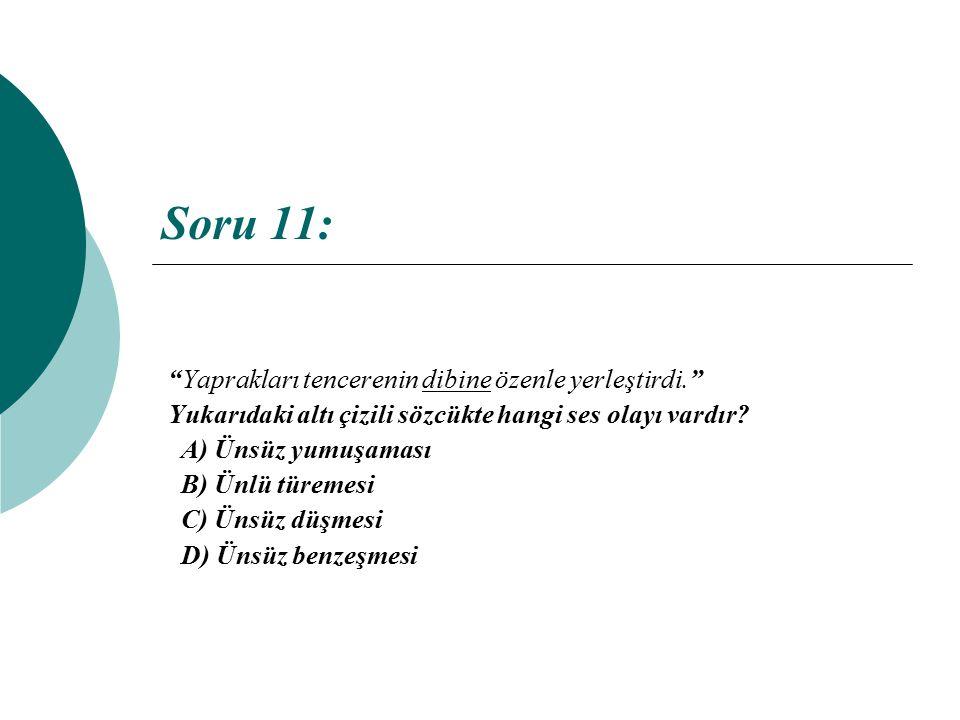 Soru 11: Yaprakları tencerenin dibine özenle yerleştirdi.