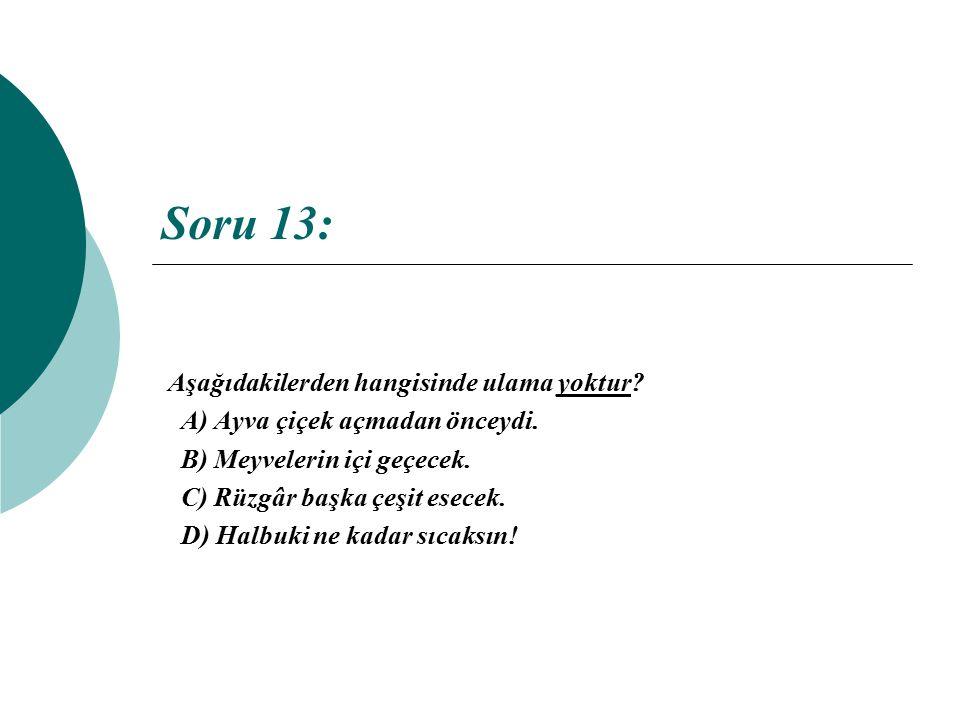 Soru 13: Aşağıdakilerden hangisinde ulama yoktur