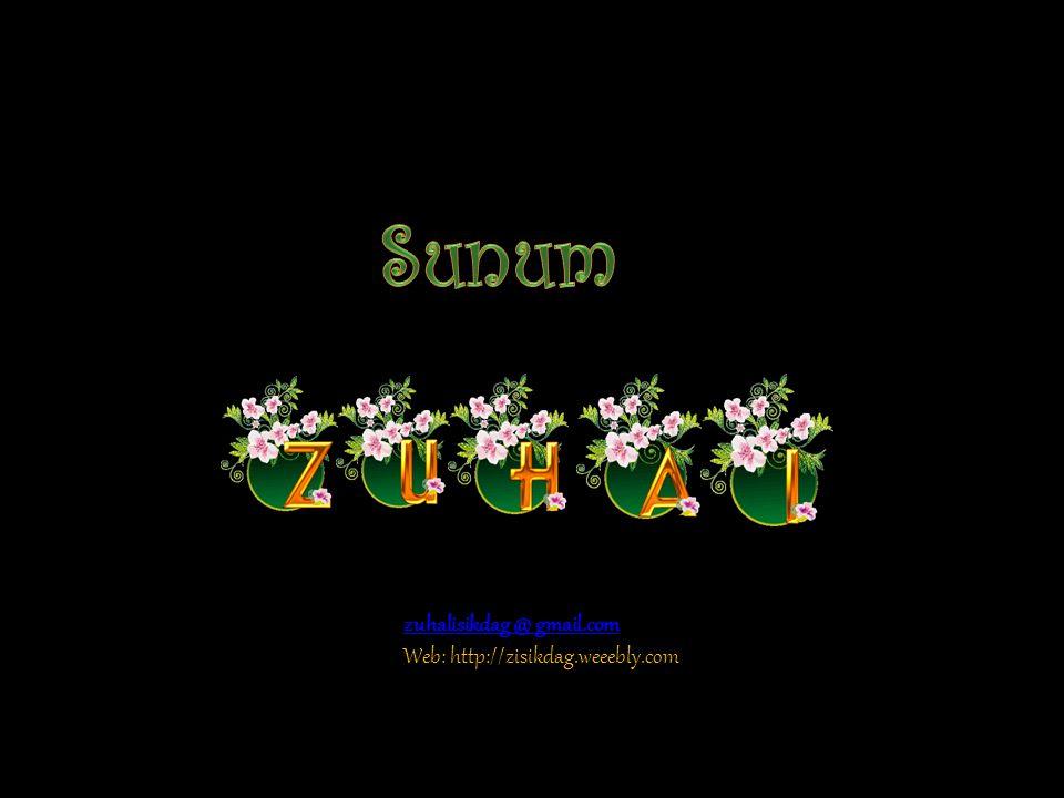 Sunum zuhalisikdag @ gmail.com Web: http://zisikdag.weeebly.com