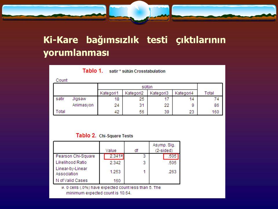 Ki-Kare bağımsızlık testi çıktılarının yorumlanması