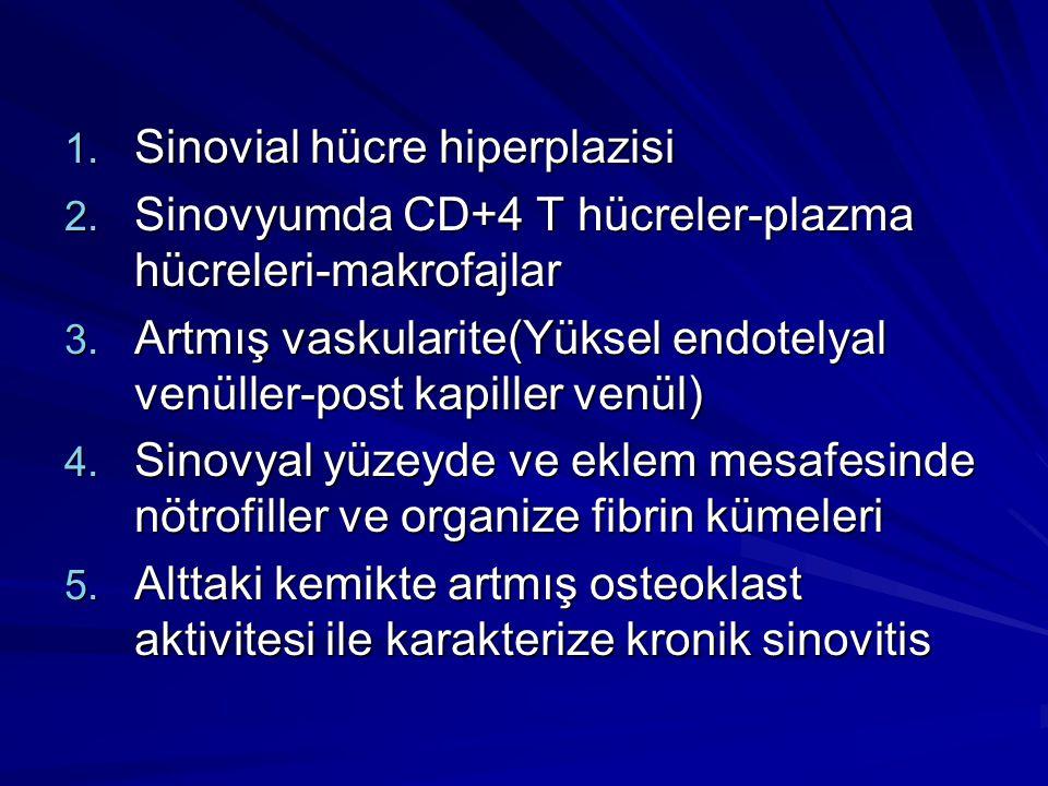 Sinovial hücre hiperplazisi
