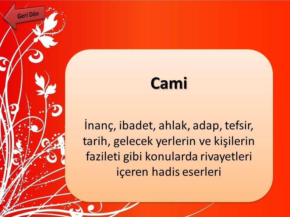 Geri Dön Cami.