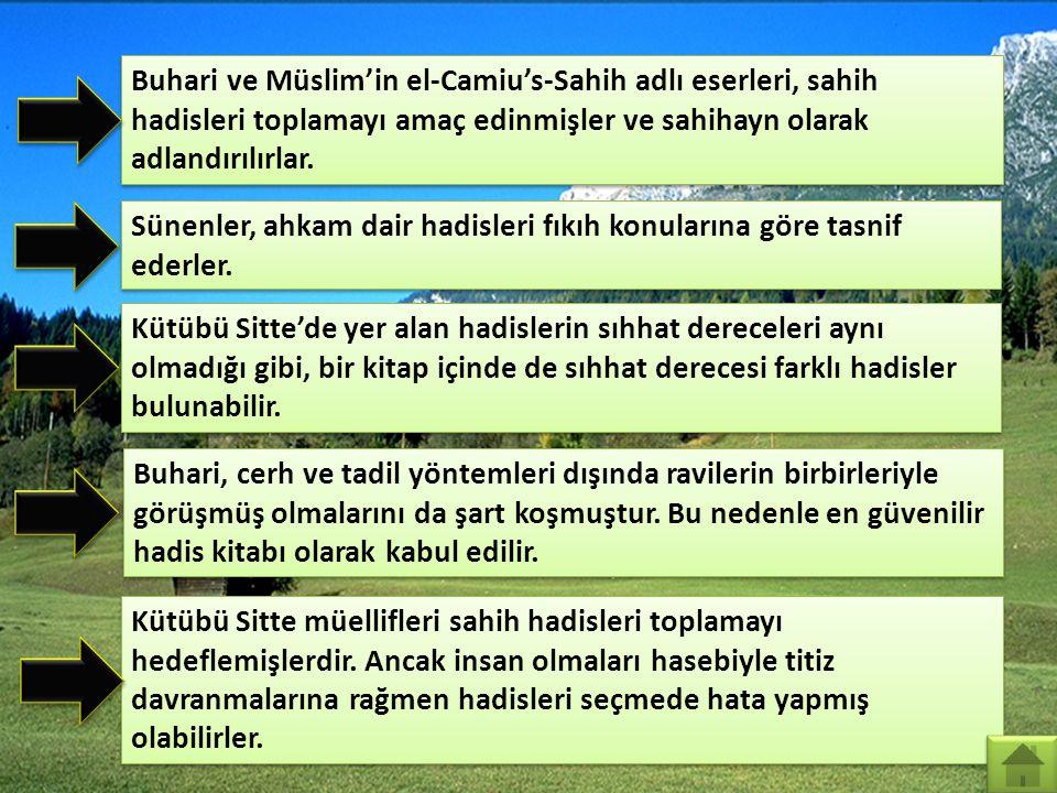 Buhari ve Müslim'in el-Camiu's-Sahih adlı eserleri, sahih hadisleri toplamayı amaç edinmişler ve sahihayn olarak adlandırılırlar.