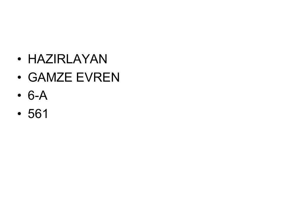 HAZIRLAYAN GAMZE EVREN 6-A 561