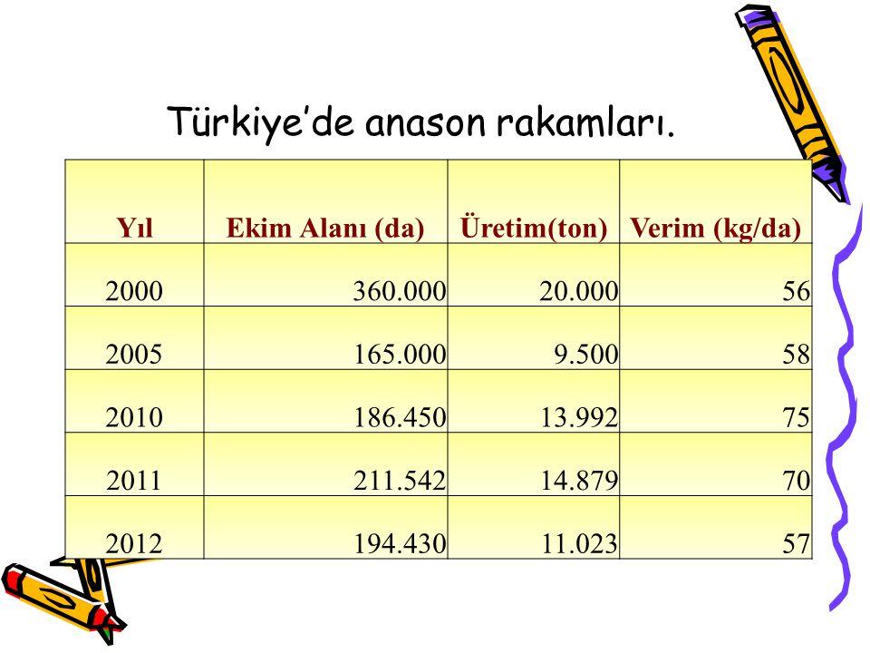 Türkiye'de anason rakamları.