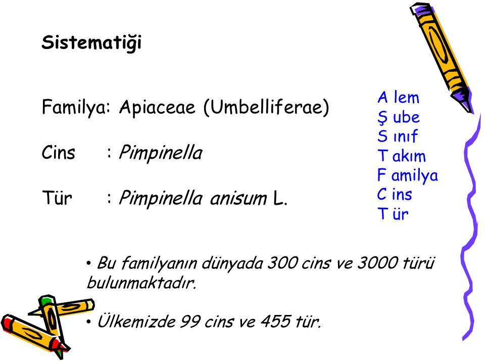 Familya: Apiaceae (Umbelliferae) Cins : Pimpinella
