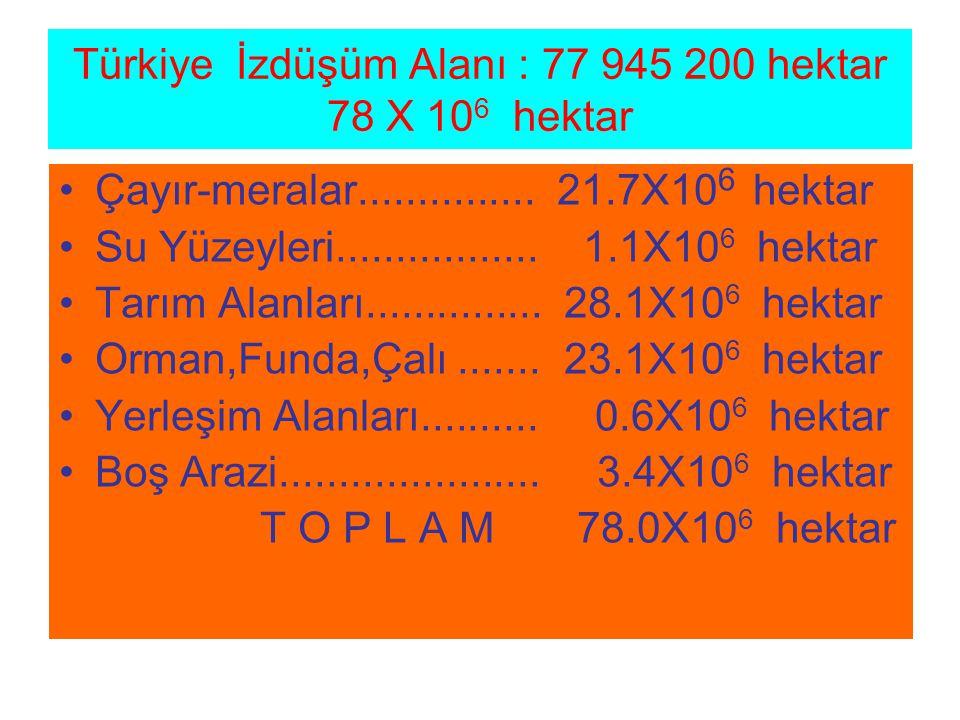 Türkiye İzdüşüm Alanı : 77 945 200 hektar 78 X 106 hektar
