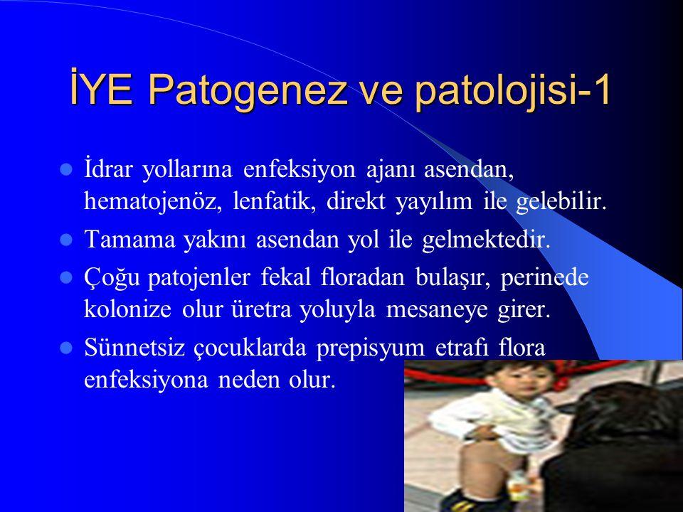 İYE Patogenez ve patolojisi-1