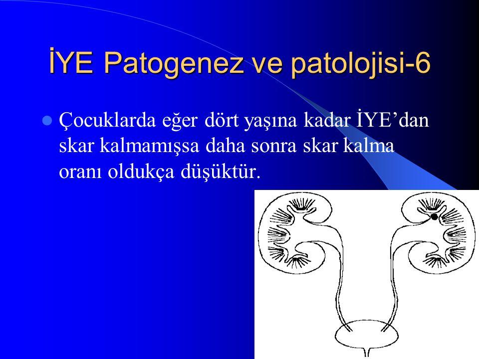 İYE Patogenez ve patolojisi-6
