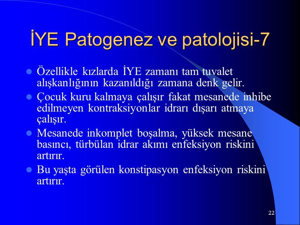 İYE Patogenez ve patolojisi-7