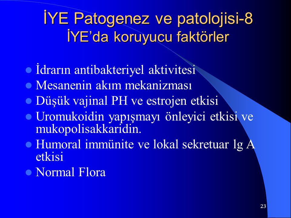 İYE Patogenez ve patolojisi-8 İYE'da koruyucu faktörler