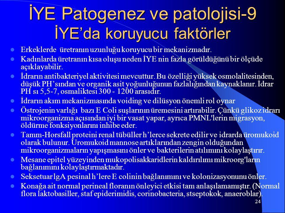 İYE Patogenez ve patolojisi-9 İYE'da koruyucu faktörler