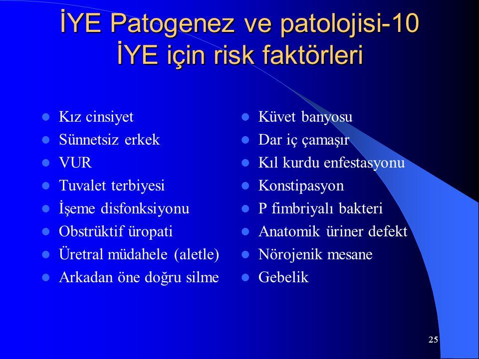 İYE Patogenez ve patolojisi-10 İYE için risk faktörleri