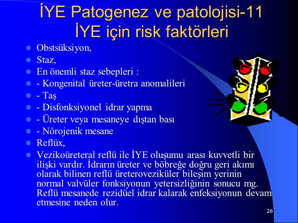 İYE Patogenez ve patolojisi-11 İYE için risk faktörleri