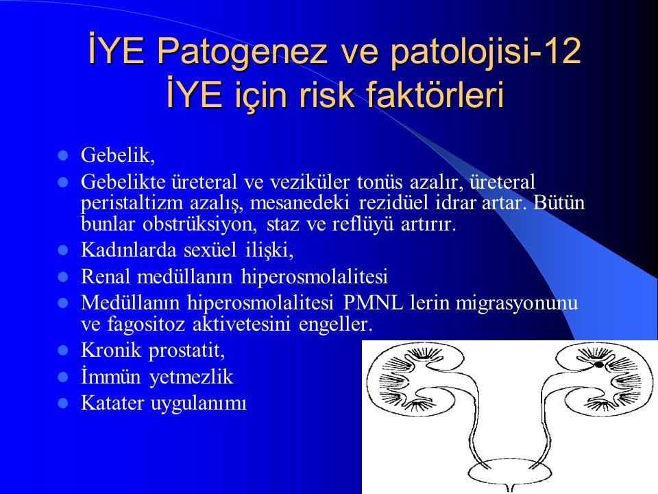 İYE Patogenez ve patolojisi-12 İYE için risk faktörleri