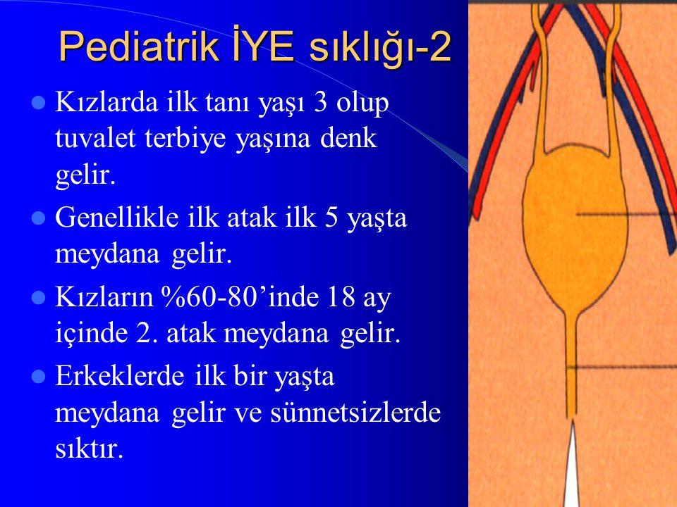 Pediatrik İYE sıklığı-2