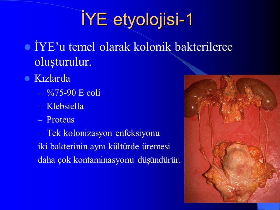İYE etyolojisi-1 İYE'u temel olarak kolonik bakterilerce oluşturulur.