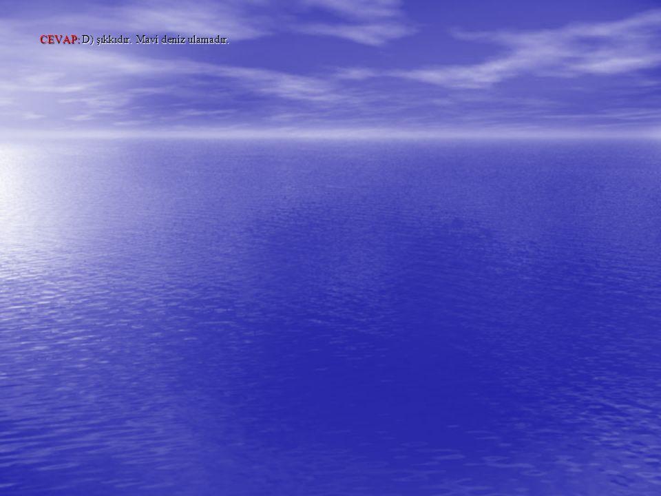 CEVAP: D) şıkkıdır. Mavi deniz ulamadır.