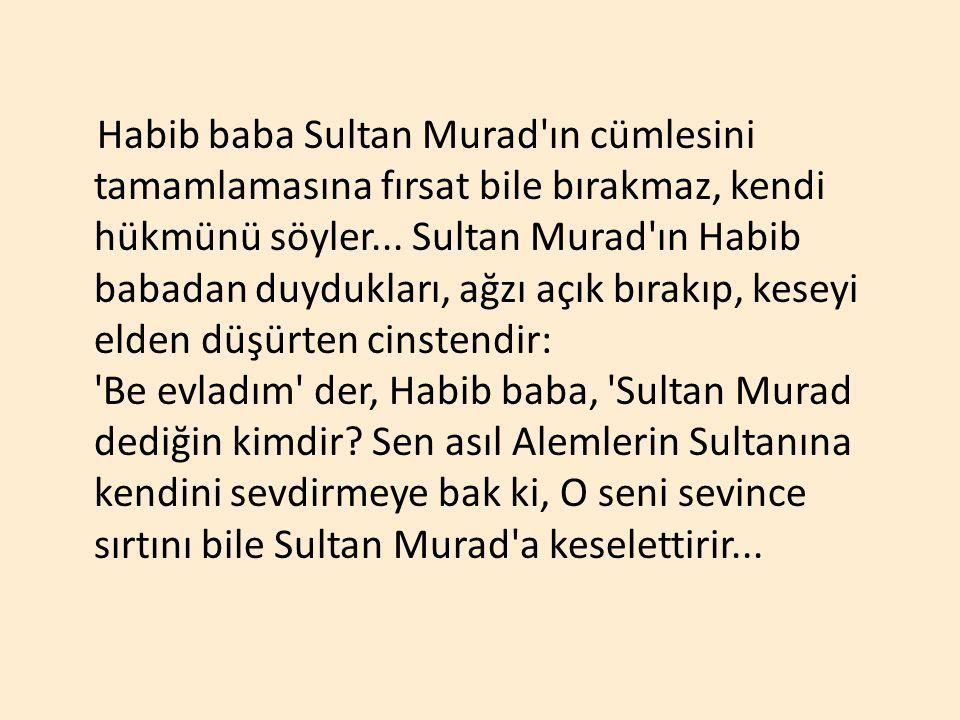 Habib baba Sultan Murad ın cümlesini tamamlamasına fırsat bile bırakmaz, kendi hükmünü söyler...