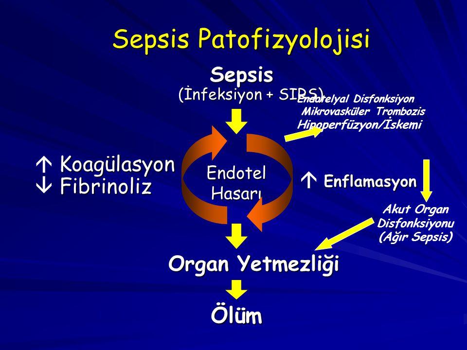 Akut Organ Disfonksiyonu
