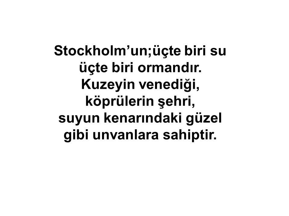 Stockholm'un;üçte biri su üçte biri ormandır