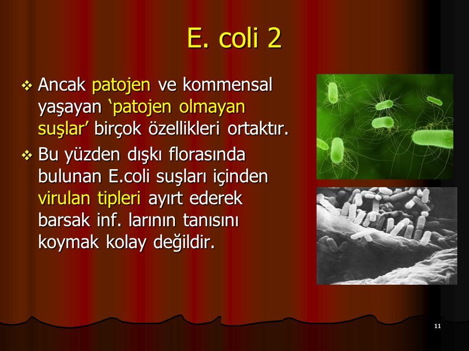 E. coli 2 Ancak patojen ve kommensal yaşayan 'patojen olmayan suşlar' birçok özellikleri ortaktır.