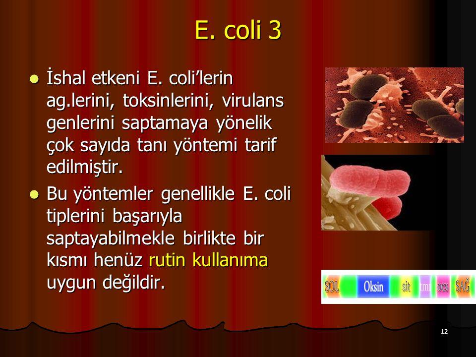 E. coli 3 İshal etkeni E. coli'lerin ag.lerini, toksinlerini, virulans genlerini saptamaya yönelik çok sayıda tanı yöntemi tarif edilmiştir.
