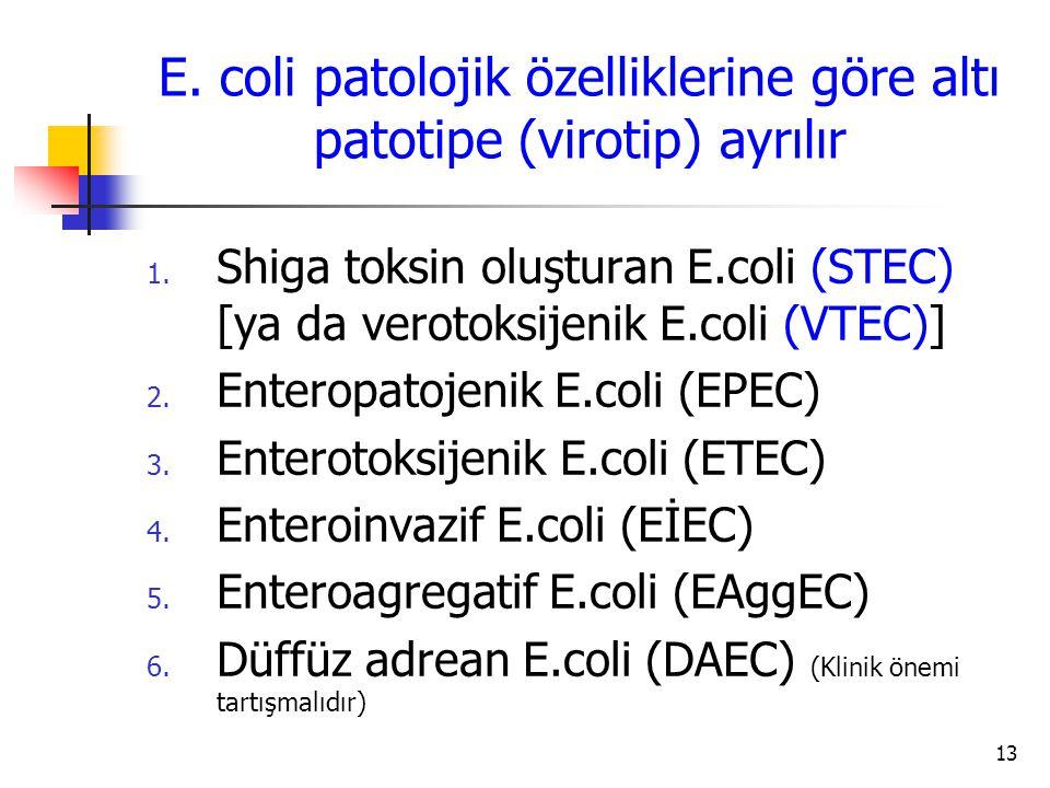 E. coli patolojik özelliklerine göre altı patotipe (virotip) ayrılır