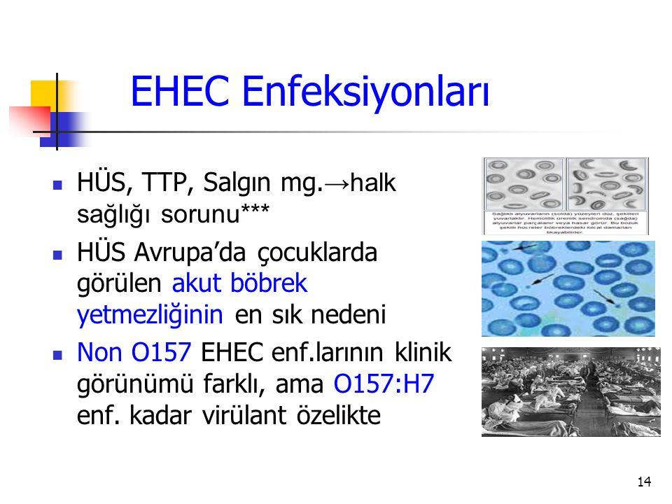 EHEC Enfeksiyonları HÜS, TTP, Salgın mg.→halk sağlığı sorunu***