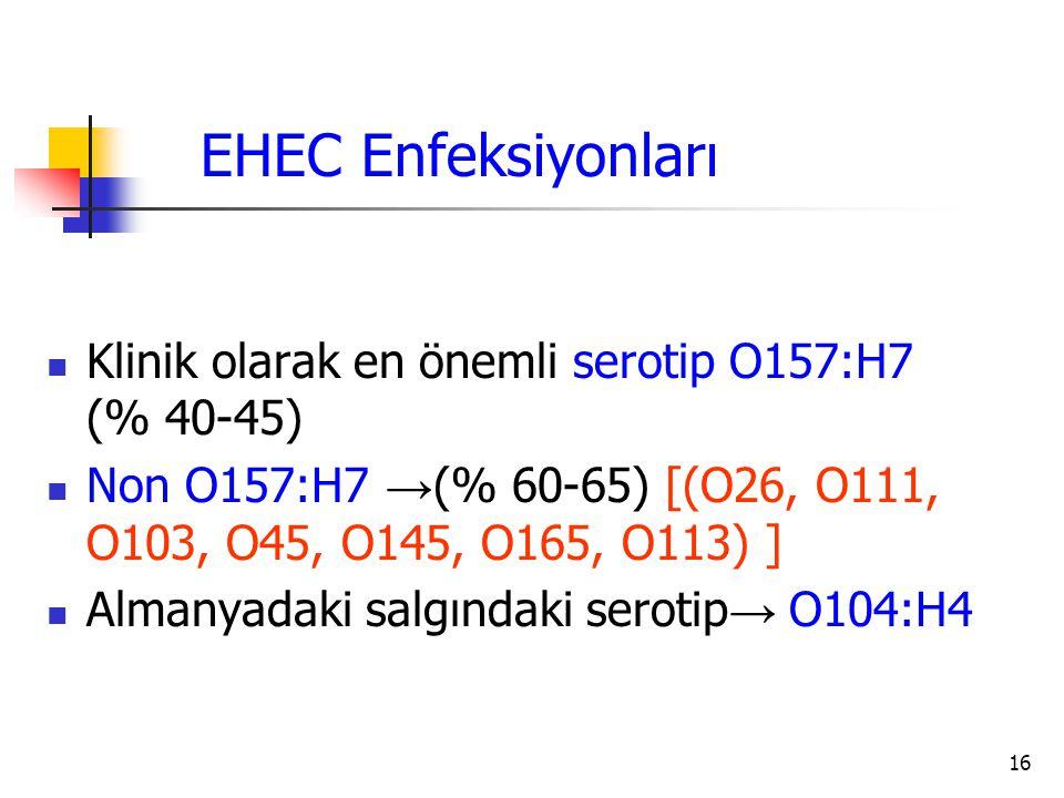 EHEC Enfeksiyonları Klinik olarak en önemli serotip O157:H7 (% 40-45)